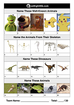 trivia jumble mix animals quiz for kids
